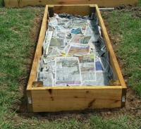 Newspaper-Lined Bed