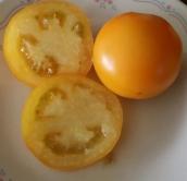 Pineapple Tomato; Sliced