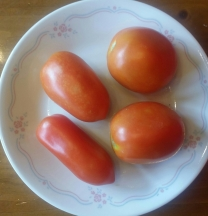 "Rectangular-shaped San Marzano tomatoes and rounded ""Roma"" tomatoes"