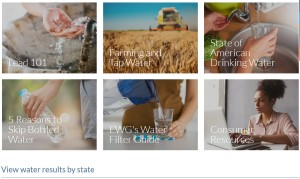 EWG's Tap Water Database, image from the website