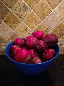 Bowl of Red Beets (1.5 gallons)