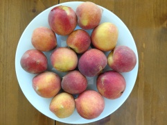 Sample of Peaches Picked July 3, 2018, on a white ceramic plate